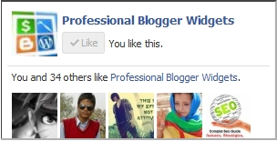 add-custom-facebook-box-to-blogger