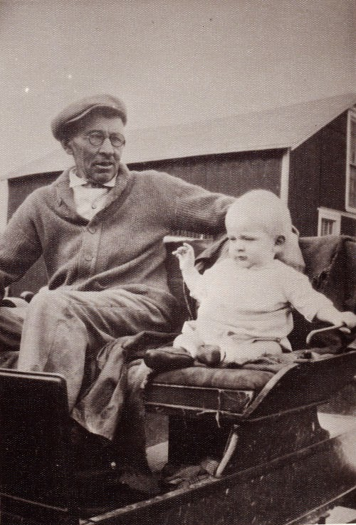 man on wagon with baby