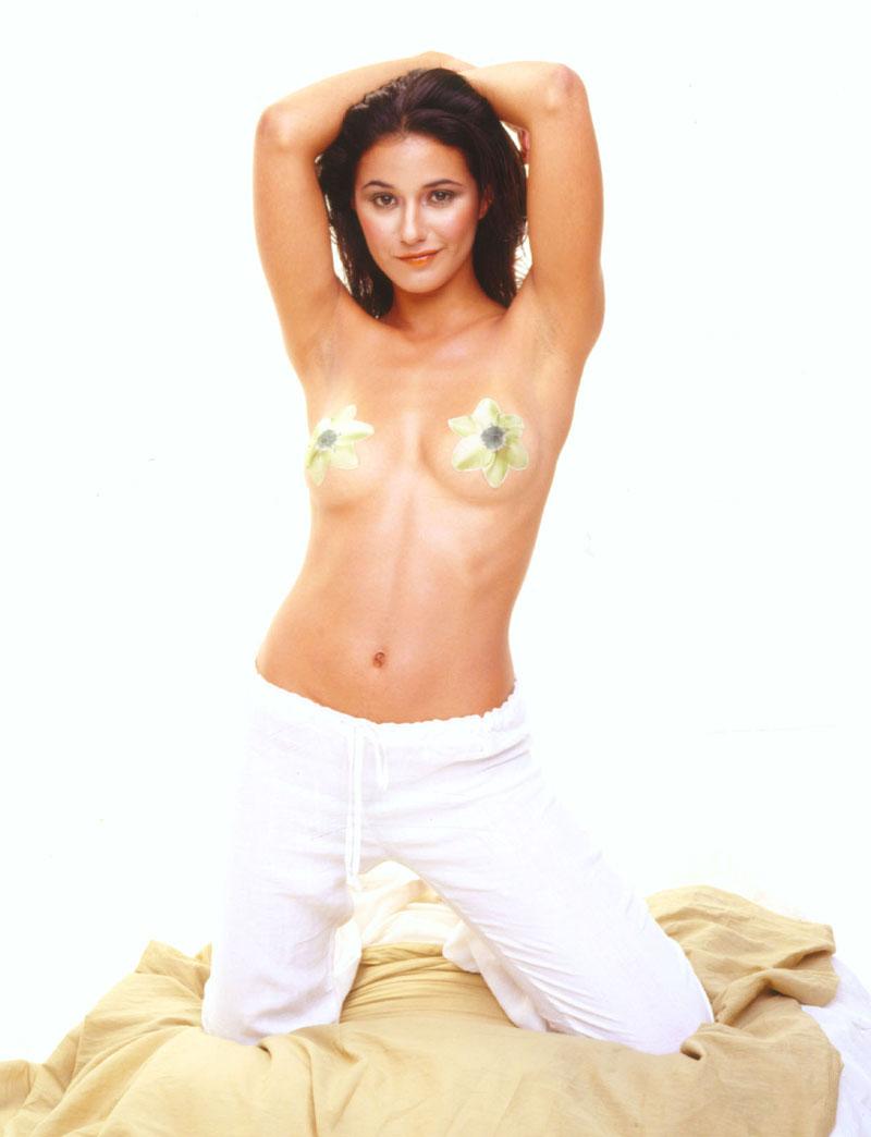 Celeb emmanuelle chriqui in sexy lingerie 6