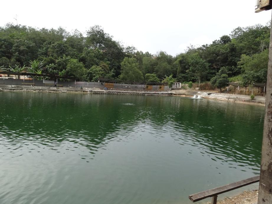 Fishing spots in kuala lumpur selangor tmn universiti for Saltwater fish pond