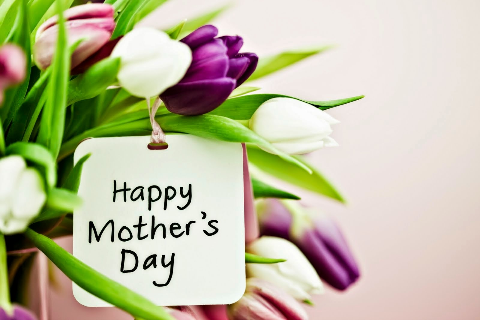 Flowers Delivery 4 U Send Mothers Day Flowers Birthday Flowers Online
