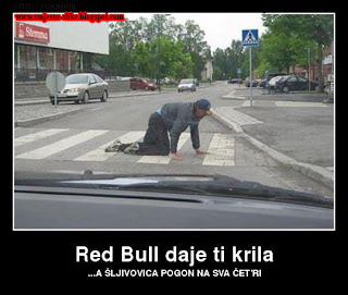 Red bull ti daje krila, sljivovica, pogon na sva cetri tocka,