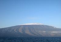 Volcan Wolf  Shield Volcano