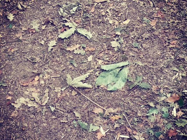 5 manualidades súper chulas con hojas de otoño
