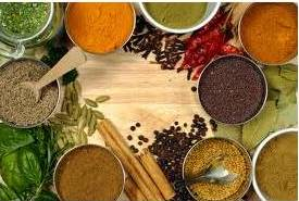 Herbs And Spices For Your Dog S Health Ottawa Dog Training And Dog