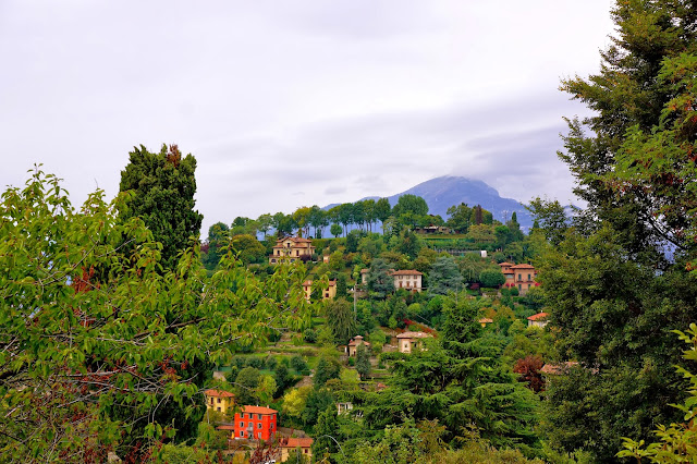 Image of trees on a hill top near Bergamo, Italy.