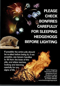 Check your bonfire
