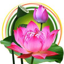 Vườn Thơ Nhạc Phật Giáo