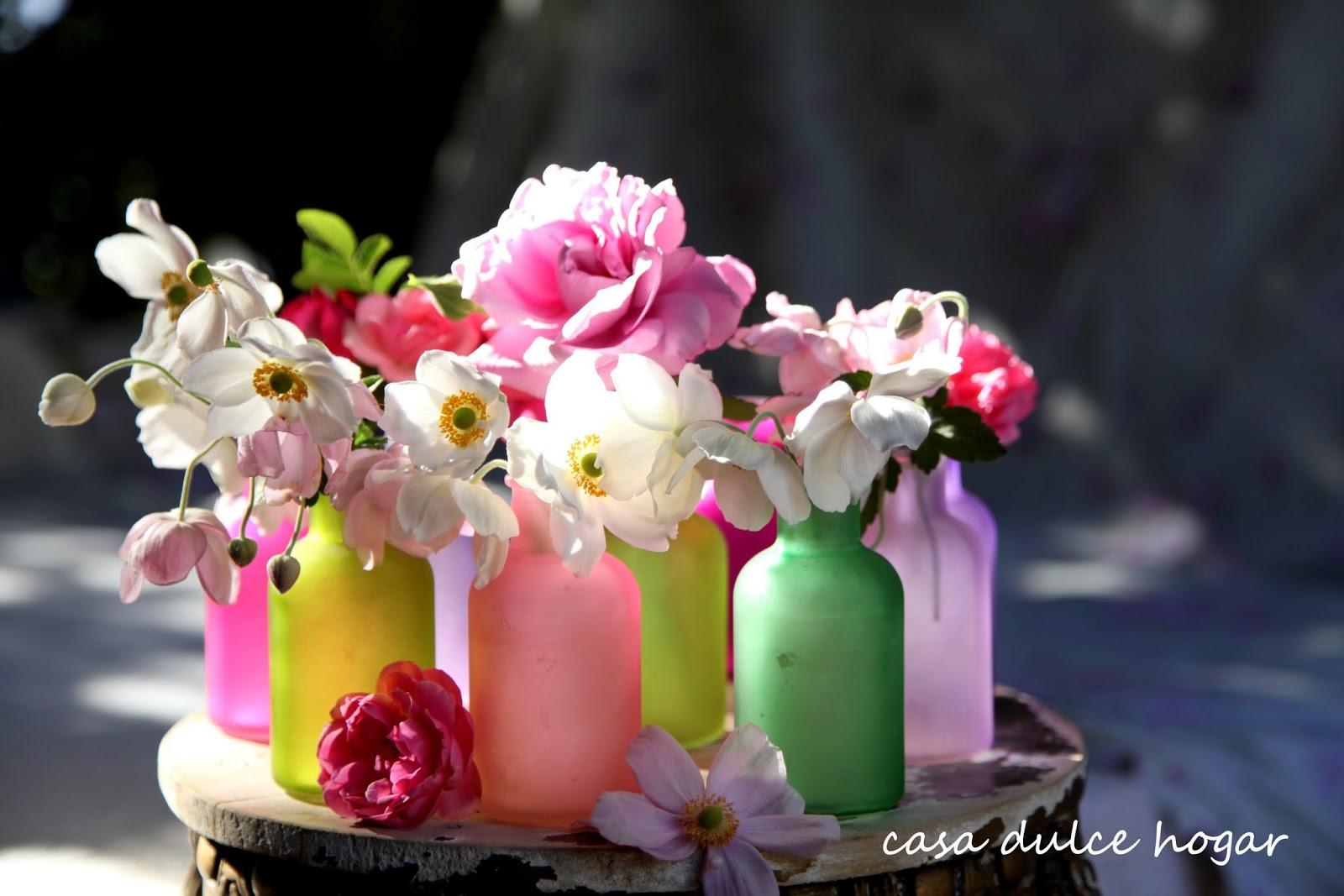 Fotos de flores, galería multicolor Jardineria - Fotos De Flores Multicolores