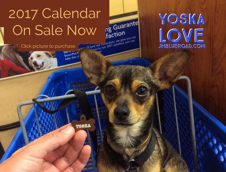 Yoska Love 2017 Calendar