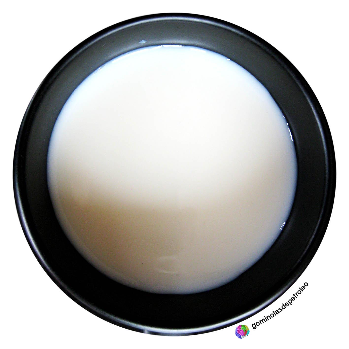 gominolasdepetroleo Cmo se procesa la leche