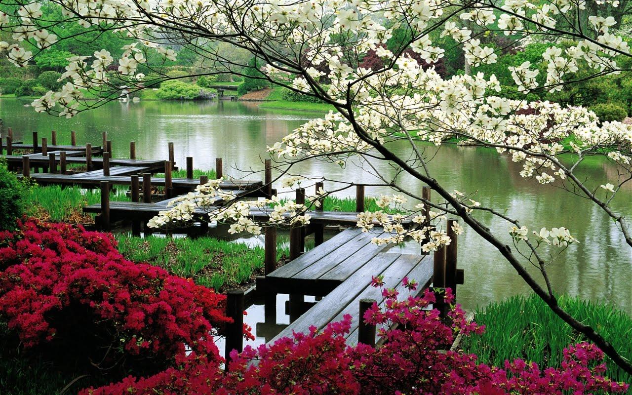 Парк с цветя, HD Wallpaper