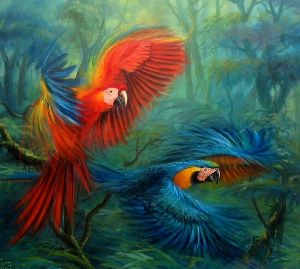 Fotografías espectaculares Paisajes del Amazonas