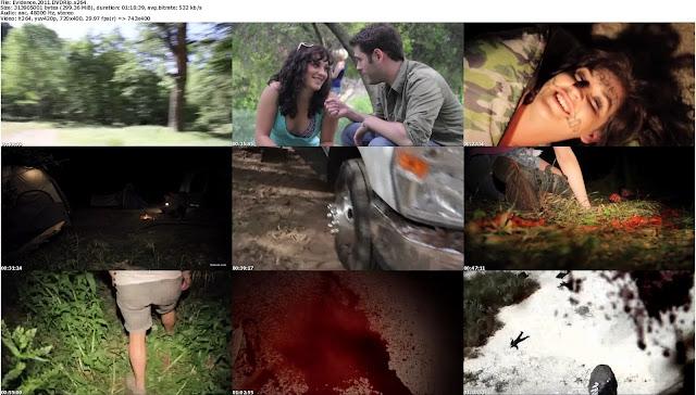 Evidence.2011.DVDRip.x264.Hnmovies