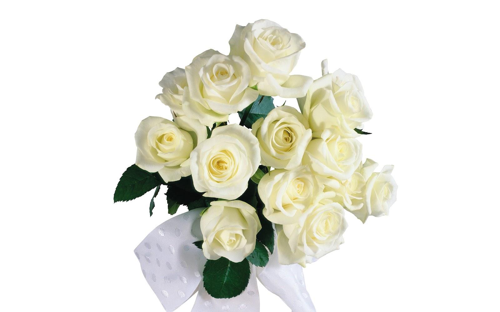 Белые розы на день рождения открытка 7418 99