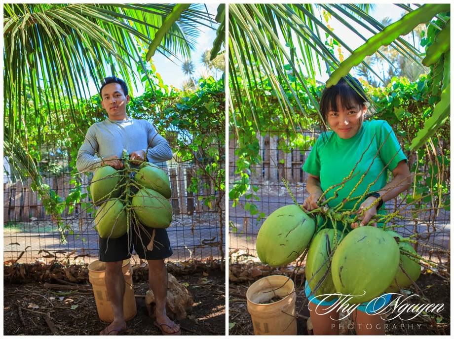 The coconut is surprisingly heavy, I had a pretty tough time holding on and carrying it inside the house