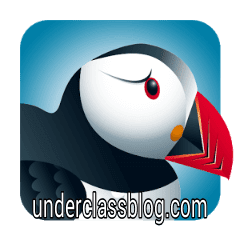 Puffin Plus - Fast & Flash 4.2.0.1834 APK