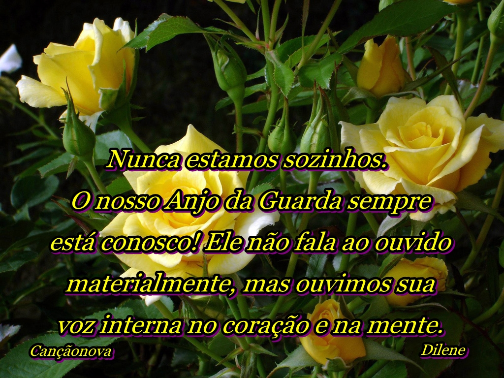 Tag Frases De Bom Dia Com Rosas Amarelas