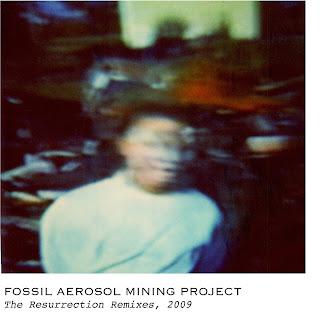 Fossil Aerosol Mining Project Simulated Mutation