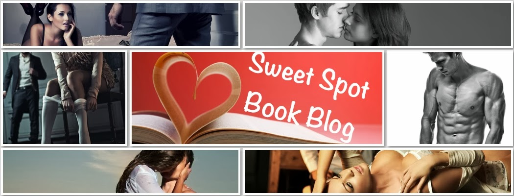 Sweet Spot Book Blog