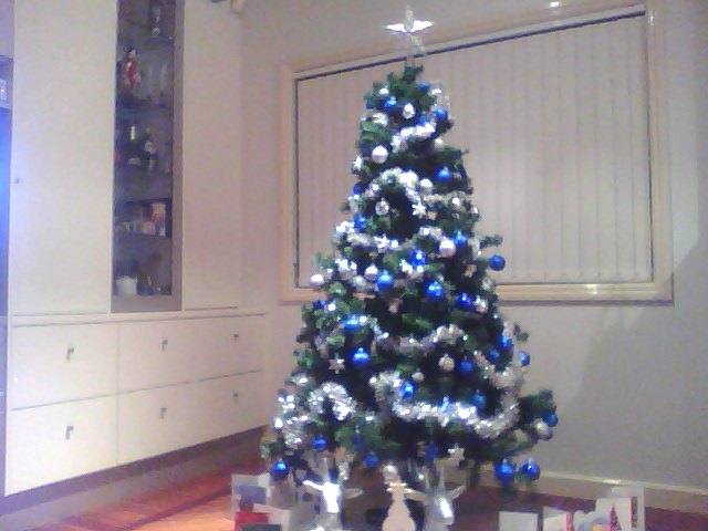 the blue and silver theme so we had to buy new silver reindeer to live under the tree because our others were gold and blah blah you get the idea haha - Blue And Silver Christmas Tree