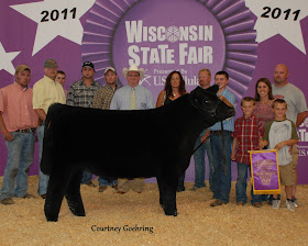 2011 Wisconsin State Fair ~ Grand Champion Market Steer ~ Sired by Eye Candy