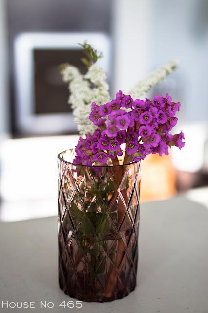 piha, kukka, norjanangervo, vuorenkilpi,