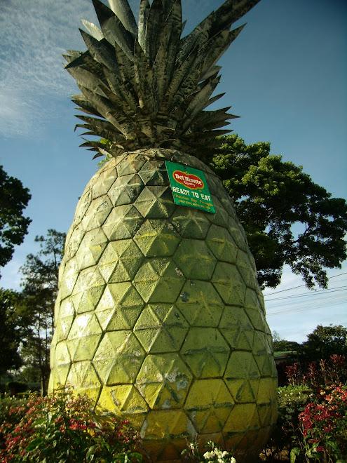 del monte big pineapple replica in bukidnon