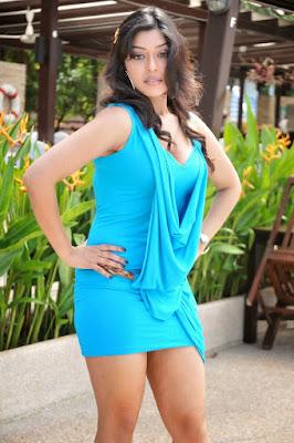 Telugu hot actress hot pics Payal Ghosh