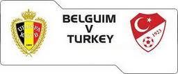 Belgia vs Turki EURO 2012