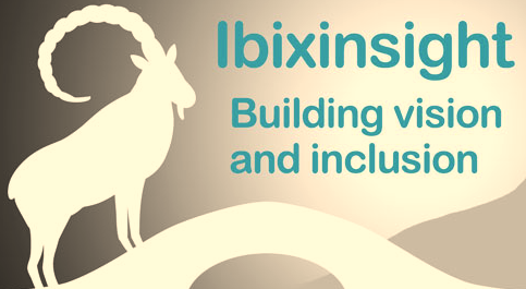 IbixInsights -  building vision and inclusion