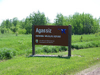 Agassiz National Wildlife Refuge, Northwest Minnesota