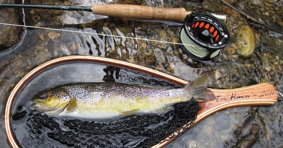 Du nord donets la rivière la pêche