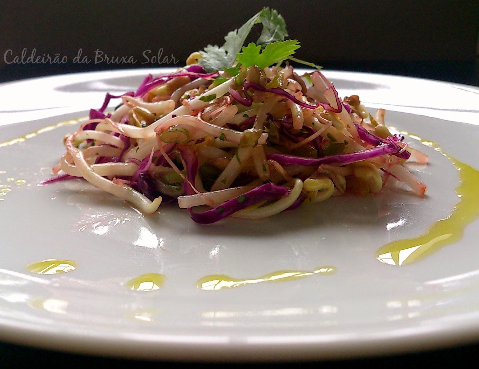 Salada de broto de feijão, repolho roxo e coentro