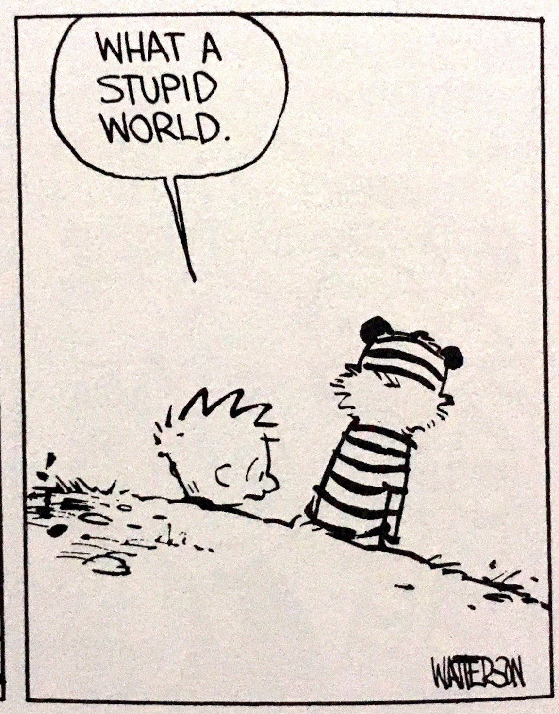 "Calvin says, ""What a stupid world."" (Calvin & Hobbes)"