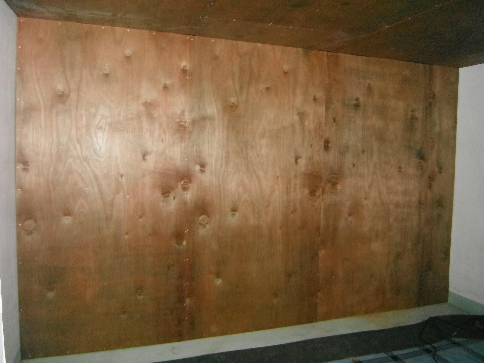 Iris micronesia july 2013 for Plywood wall sheathing