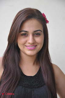 Aksha Latest Pictures at Rey Rey Success Meet  0006