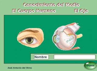 http://www.juntadeandalucia.es/averroes/~23003429/educativa/CM_ojo.html