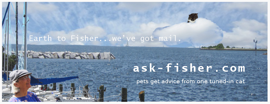 Ask Fisher