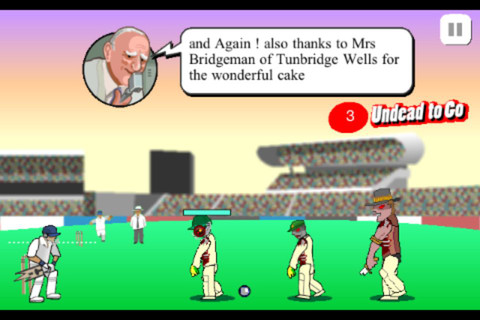 free cricket flash games