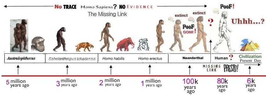 Human Evolution Homo Timeline on Holt World History Worksheets