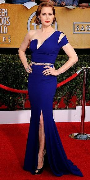 Amy Adams, SAG Awards 2014, The Best Dressed Stars on the Red Carpet find more mens fashion on blue dress of lovely woman
