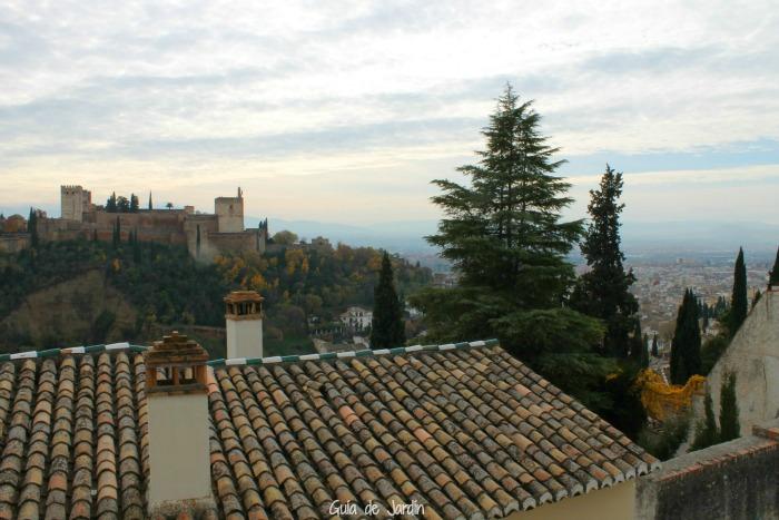 Tejados del Albaicín y Alhambra