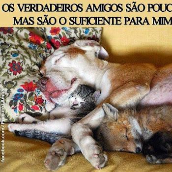 Foto Para Marcar Amigos No Facebook Fotos Para Facebook