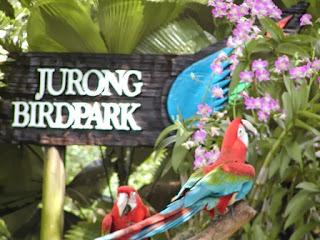 tempat wisata di singapore untuk anak, kebung binatang, taman burung,