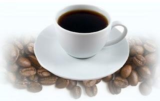 jual kopi luwak asli civet cofee