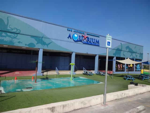 Noah 39 S Miracle San Antonio The Aquarium Sea World