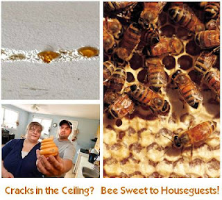 Bees' Home Office. Image Collage by Wo-Built