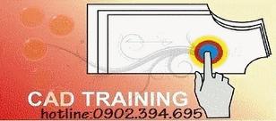 Hotline 01686 4533 79