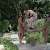 Pro Skater Eli Reed Skates PLAYBOY Mansion